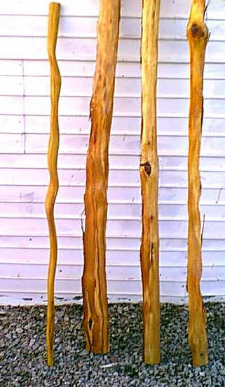 Osage Walking Sticks